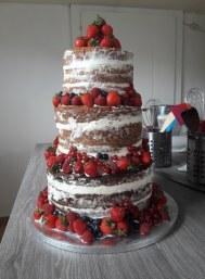 Nude Cake (15)